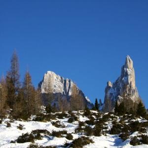 In Trentino l\'Associazione \