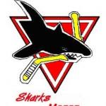 Arcore: Primo Trofeo Sharks il 5 Ottobre 2008
