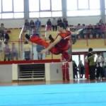 """Piccolo Rifugio: Il 18 Giugno 2010 Esibizione di """"Wushu – Kung Fu"""""""