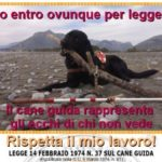 In alcuni ospedali italiani divieto d'accesso per i cani guida