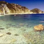 Isola d'Elba (LI): A breve tempo sorgerà una Struttura con 64 posti letto per Disabili