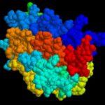 Eritropoietina per Combattere la SLA