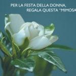 Per la festa della donna regala la gardenia dell'AISM